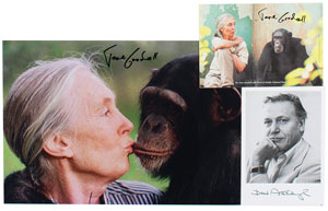 Jane Goodall and David Attenborough