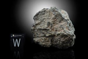 Northwest Africa (NWA) 11788 Lunar Meteorite