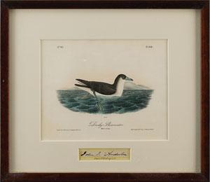 John J. Audubon
