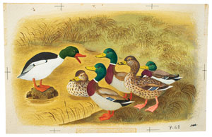 Gustaf Tenggren watercolor painting of a duck family from Farm Stories