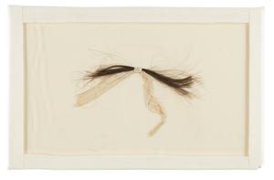 Необычайно большая прядь волос Авраама Линкольна из коллекции известного эксперта по Линкольну Фредерика Х. Месерта
