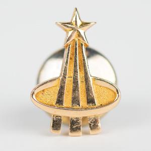 Al Worden's Gold Astronaut Pin