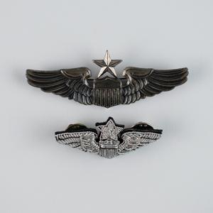 Al Worden's Air Force Silver Wings